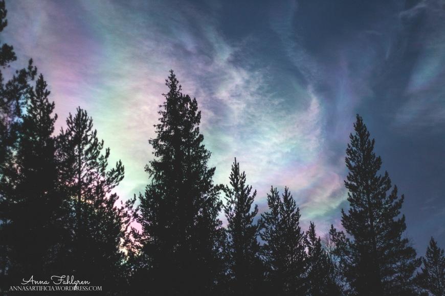 fin himel