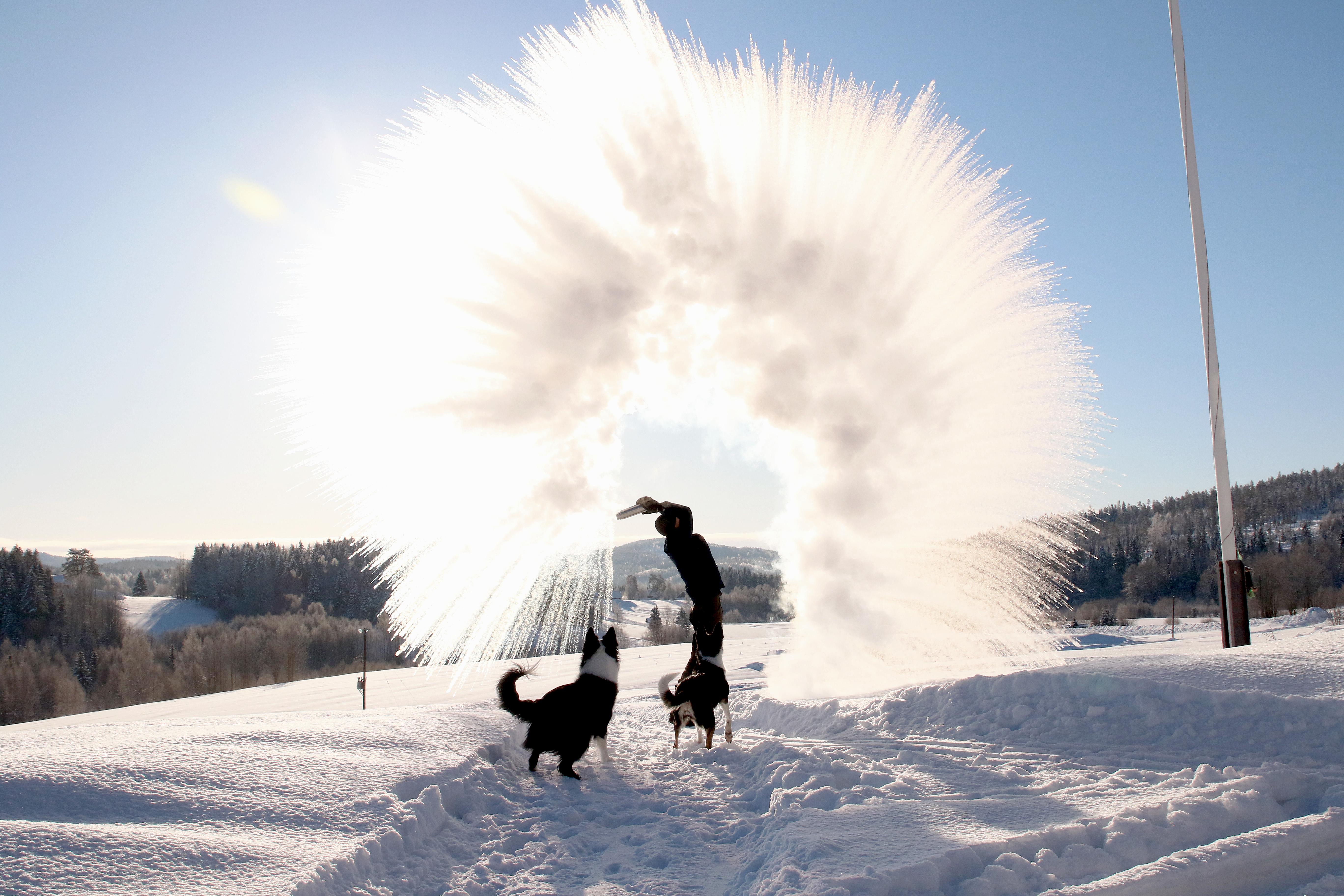 Härlig vintermorgon!